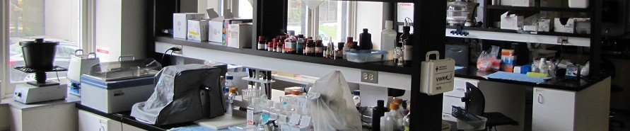 Lab benches in main HMRC lab